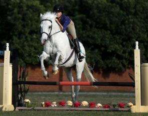 Orlando Horse Training