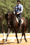 Orlando horse lease
