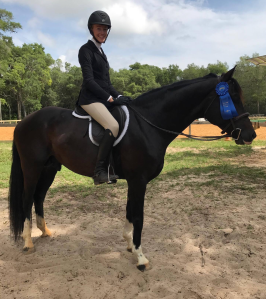 orlando horse trainer